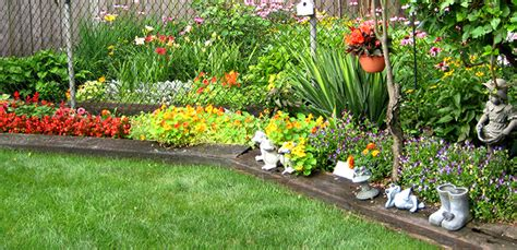 Garden Types : 5 Types Of Plants To Choose For Your Small Garden