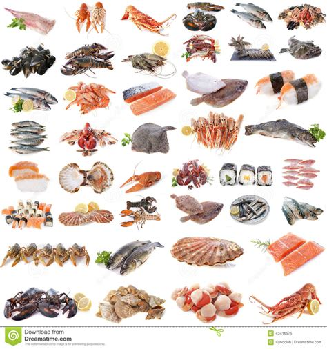 Red Boat Fish Sauce South Africa by Meeresfr 252 Chte Fische Und Schalentiere Stockfoto Bild