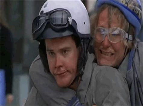 Dumb And Dumber Bathroom Animated Gif by Dumb And Dumber Gifs Find On Giphy