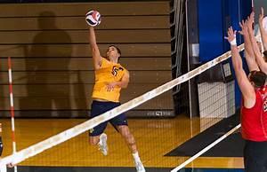 Wilkes University Athletics - Wilkes Men's Volleyball ...