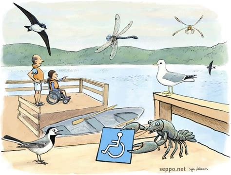 Cartoon Boat Dock by Outdoors Wheelchair Accessible Boat Dock Environmental