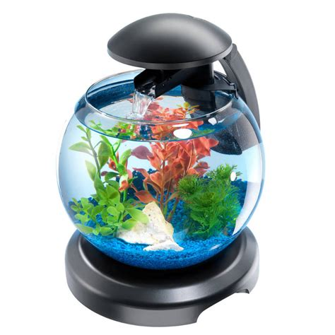 d 233 co aquarium en ligne