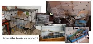 maison pour cage lapin images