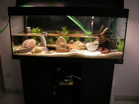 achat aquarium 20 litres