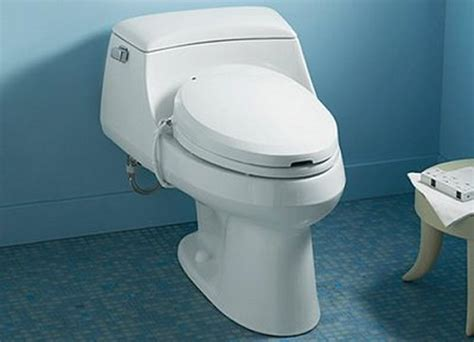 combine bidet and toilet in your bathroom home decoration ideas
