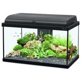 achat aquarium 50 litres