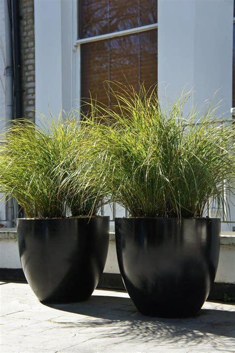 25 best ideas about large flower pots on flower planters large outdoor planters