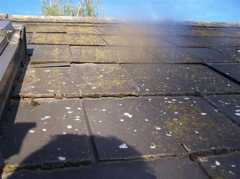 nettoyer la mousse de la terrasse des tuiles des ardoisesmonbicarbonate fr