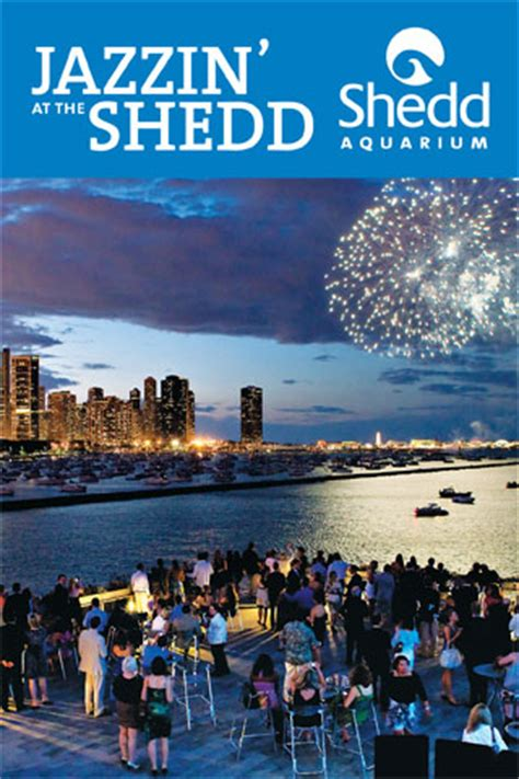 abounds this summer when jazzin at the shedd makes a