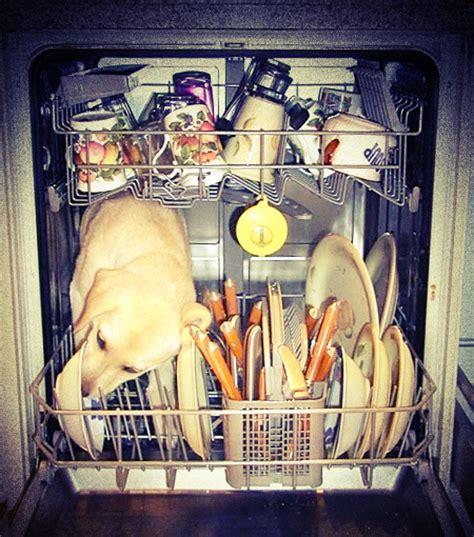 comment reparer le lave vaisselle