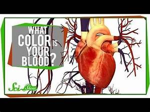What Color is Your Blood? - YouTube. I just want to cry ...