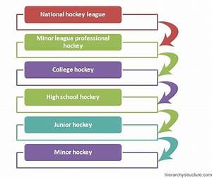 1000+ images about Sports Hierarchy on Pinterest ...