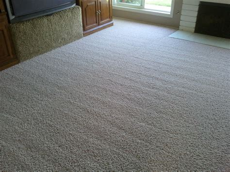 Best Types Of Carpet For High Traffic Areas Black Max Carpet Extractor Renting Cleaner At Lowes Cleaning Pasadena Maryland How To Remove Red Stains From With An Iron Use Bissell Rental Oriental In Northern Va Rainbow Huntsville Tx Fashions 2017