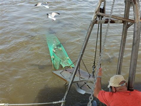 Shrimp Boat Tour Biloxi Mississippi by Catching Shrimp In Biloxi Bill On The Road
