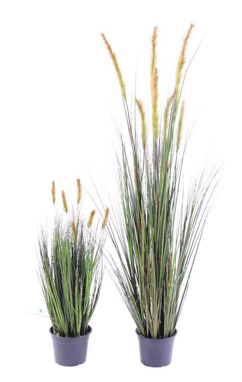 plante artificielle gramin 233 e vulpin des chs foxtail en pot int 233 rieur h 90 cm