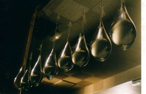 expression prendre des vessies pour des lanternes 183 toute une vie