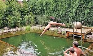 Badeteich Im Garten : schwimmteich bauen ~ Markanthonyermac.com Haus und Dekorationen