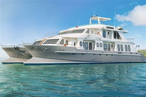 Alia Catamaran Galapagos cruises galapagos luxury class