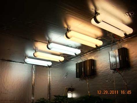 magnetic induction grow lights plasma grow lights do