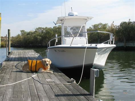 Regulator Boats Long Island by Post Your Regulator Page 7 The Hull Truth