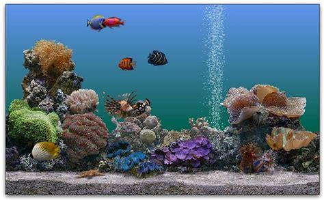 desktop background fond d 233 cran gratuit aquarium qui bouge