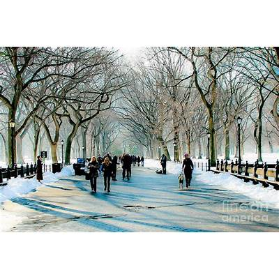 Central Park In Winter Photograph by Ken Marsh