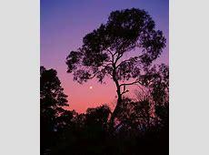 UKC Articles DESTINATION GUIDE Mount Arapiles Australia