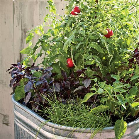 15 Stunning Container Vegetable Garden Design Ideas & Tips