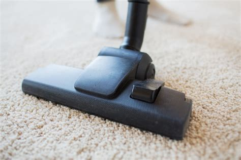Choosing The Different Types Of Carpet Cleaning Methods Mold Under Carpet In Bat Natural Way To Get Rid Of Cat Urine Odor Cleaner Prices Toronto Academy Awards 2016 Red Arrivals Inland Python Care Sheet One Boulder Cost Replacing Crossley Mills