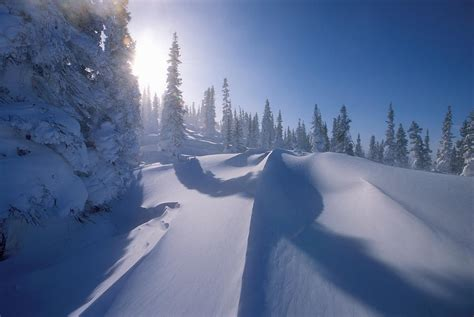 Winter Scene, Labrador, Newfoundland Photograph By Jerry