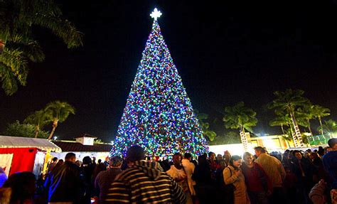 The 8 Most Beautiful Christmas Trees In America