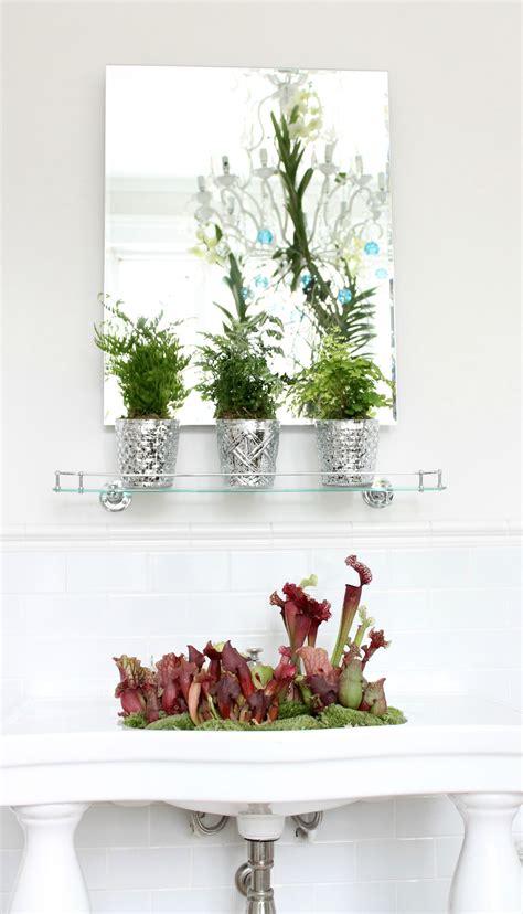 plants in bathroom no light bathroom trends 2017 2018