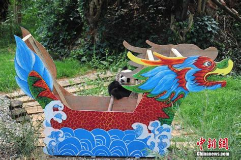 Row The Dragon Boat by Row Your Dragon Boat Pandas