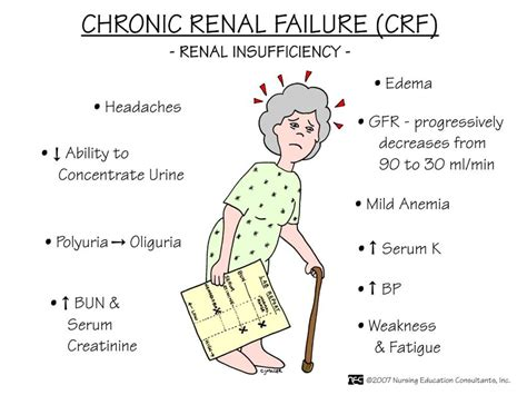 Image Detail For  Renal Failure And Renal Failure. Reduce Anxiety Signs. Pancreas Pain Signs Of Stroke. Kody Rock Signs Of Stroke. Speed Limit Signs Of Stroke. Moon Chart Signs Of Stroke. Serious Signs Of Stroke. Folders Signs. Artery Signs