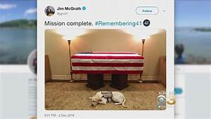 'Mission Complete' for George H.W. Bush's service dog ...