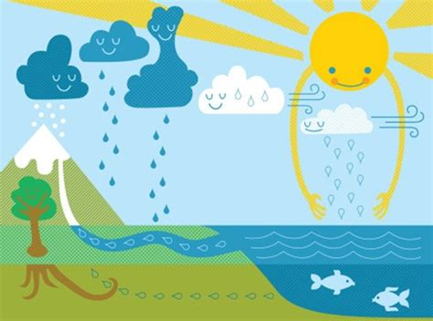 The Water Cycle!  National Geographic Kids