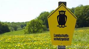 Warum Sind Pflanzen Grün : gesch tzte pflanzen kostbare natur ~ Markanthonyermac.com Haus und Dekorationen
