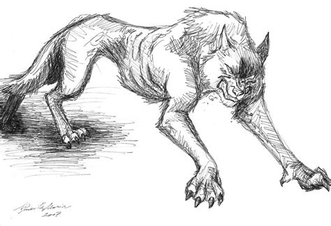 Demon Wolf Drawing