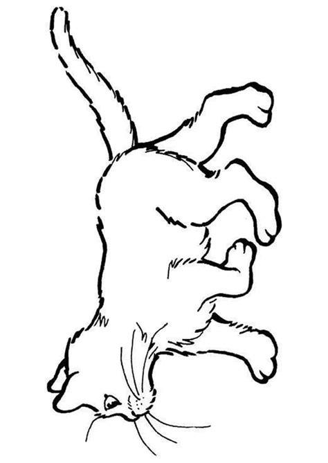 coloriage chat 21 sur hugolescargot hugolescargot