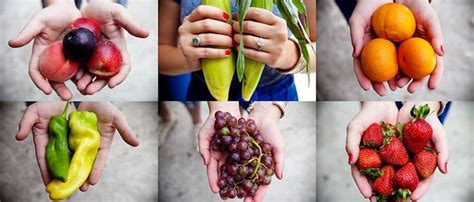 33 best images about charleston farms farmers markets on