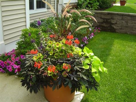 Container Gardening Tips  Bob Vila