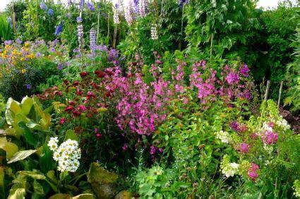 Cottage Garden Ideas Pictures  House Beautiful Design