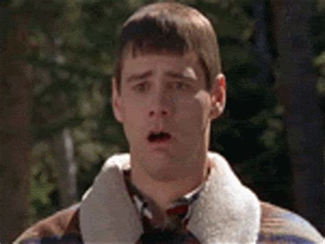 Dumb And Dumber Bathroom Animated Gif by Gross Dumb And Dumber Gif Find On Giphy