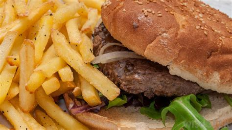 what are the different types of food franchises