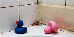 Was Tun Gegen Maden In Der Wohnung : was tun gegen schimmel in der wohnung umweltmedizin gesundheit ~ Markanthonyermac.com Haus und Dekorationen