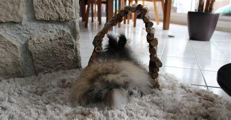carrelage design 187 tapis pour lapin moderne design pour carrelage de sol et rev 234 tement de tapis