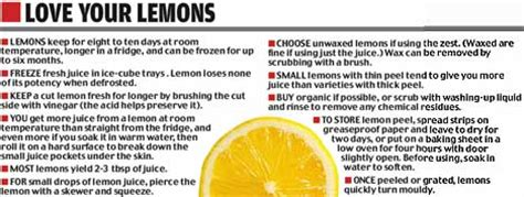 Lose weight for Christmas with the Lemon Juice Diet   Daily Mail Online