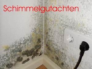 Schimmelpilz Im Bad : schimmel kosten ehingen schimmelgutachter schimmelpilz entfernen wohnung ~ Markanthonyermac.com Haus und Dekorationen