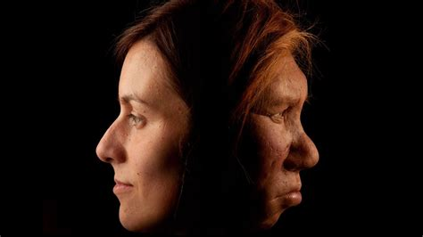 rich sexual past between modern humans and neandertals revealed science aaas