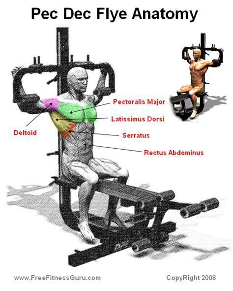 chest gymhard